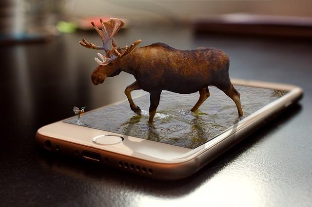 los kráčející na povrchu mobilního telefonu